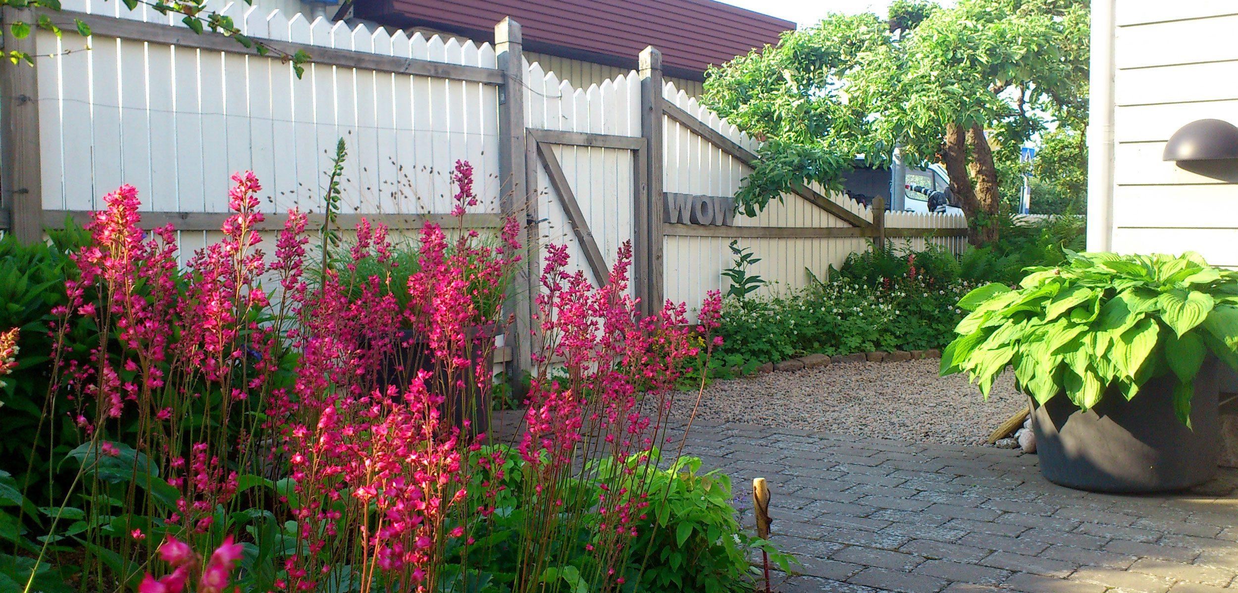 Rosa blomspiror i förgrunden,, en grusgång och ett vitt staket med ordet WOW i 3D-bokstäver.