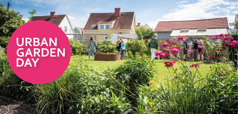 Besökare vimlar runt i en trädgård under Urban Garden Day 2019.