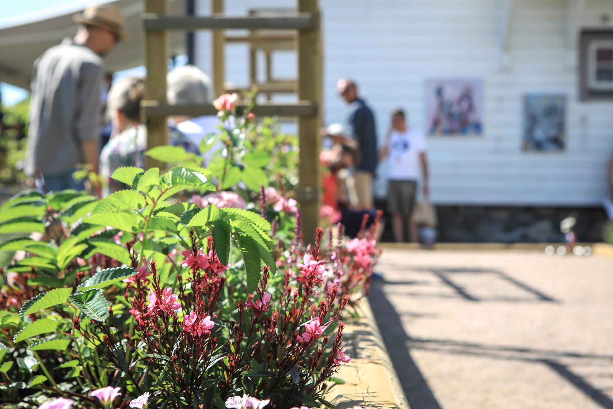Plantering, trädgårdsvandrare och konst. Foto Will Rose.